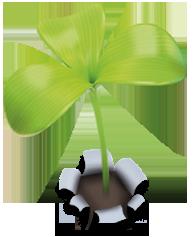 Une petite fleur verte