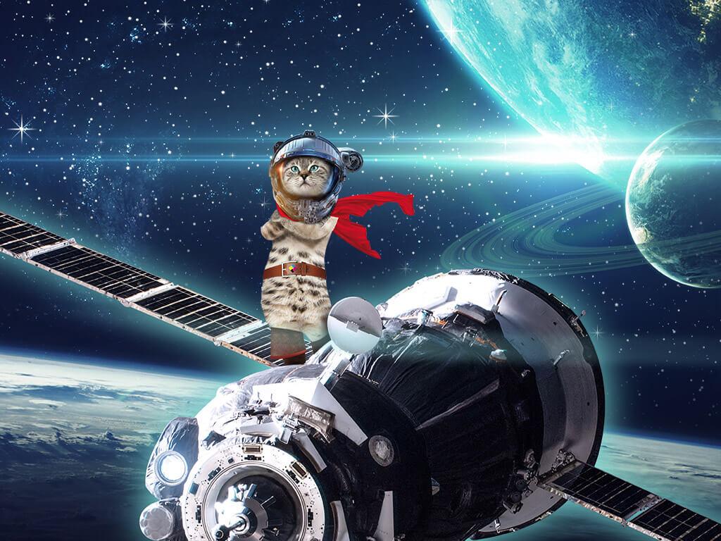 Un chat debout sur une fusée dans l'espace